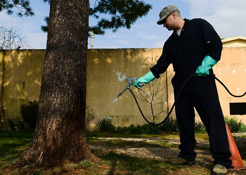 10 Benefits of Working with a Leading Pest Control Company